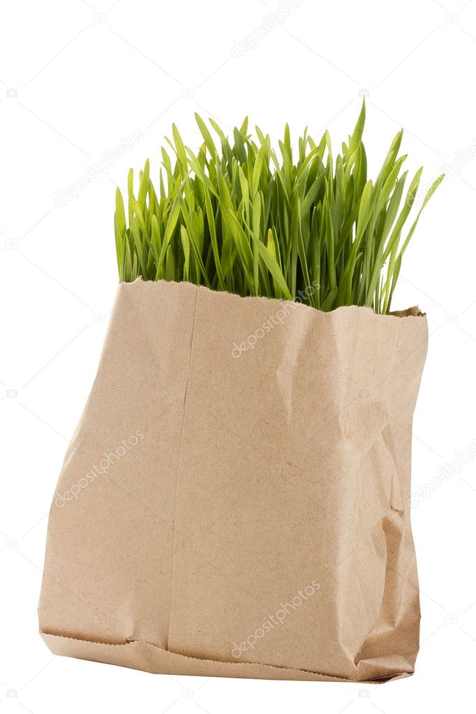 Green organic wheat grass in a brown bag. — Stock Photo #5584302