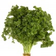 Curly parsley - Stock Photo