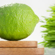 Lime and Wheatgrass - Stock Photo