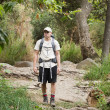 Stock Photo: Backpacking Forest