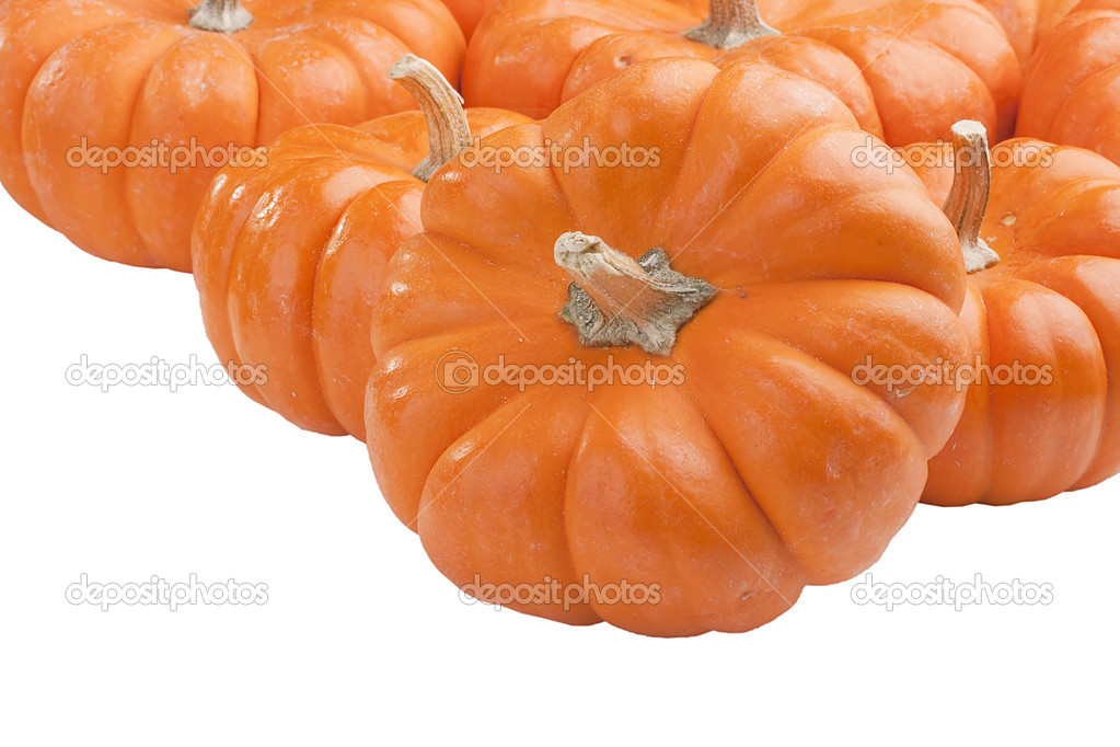 Small orange pumpkins symbolising autumn holidays and used in decorative works.  Stock Photo #6280548