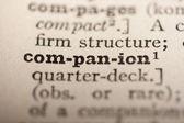 Word companion — Stockfoto