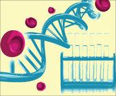 DNA helix — Stock Vector
