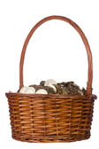 Coins in a Basket — Stock Photo