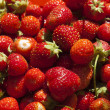 图库照片: Just collected strawberry.