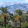 Landscape. Palm trees, a minaret on a background of mountains. T - Стоковая фотография