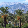Landscape. Palm trees, a minaret on a background of mountains. T - Zdjcie stockowe