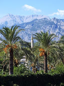 Landscape. Palm trees, a minaret on a background of mountains. T — Zdjęcie stockowe