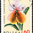 Orchid Vanda Sanderiana on post stamp — Stock Photo