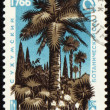 Royalty-Free Stock Photo: Palm trees in botanical gardens on post stamp