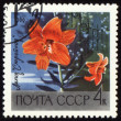 Orange lily on post stamp — Stock Photo