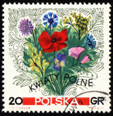 Bouquet of wildflowers on post stamp — Stock Photo