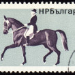Royalty-Free Stock Photo: Horse with rider on post stamp