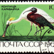 Spoonbill and ibis on post stamp — Stock Photo