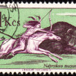 Injun buffalo hunting on post stamp — Stock Photo