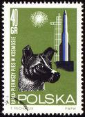Primer perro laika en el espacio en sello de correos — Foto de Stock