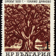 Old 500-years nut-tree in Golyamo-Dryanovo on post stamp - Stock Photo