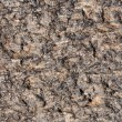 Rough brown stone texture - Stock Photo