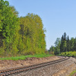 Stock Photo: Railroad track in forest