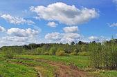 Strada di campagna e le nuvole nel cielo blu — Foto Stock