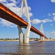 Big cable-braced bridge in Murom, Russia - Stock Photo