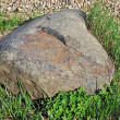 Big stone in green grass — Stock Photo