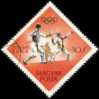 Fencing on post stamp — Stock Photo