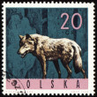 Foto Stock: Wolf on post stamp