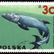 Royalty-Free Stock Photo: Prehistoric fish Eusthenopteron on post stamp