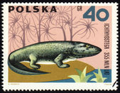 Dinosaur Ichthyostega on post stamp — Stock Photo