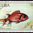 Fish Myripristis jacobus on post stamp — Stock Photo