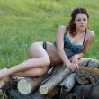 Sexy girl on the pile of firewood - Zdjęcie stockowe