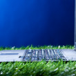 Royalty-Free Stock Photo: Laptop in grass