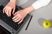 Working on laptop — Stock Photo
