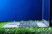 ноутбук в траве — Стоковое фото