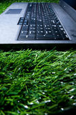 Laptop in grass — Stock Photo