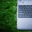Royalty-Free Stock Photo: Laptop on grass