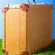Suitcase on grass — Stock Photo