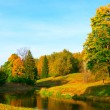 Stockfoto: Beautiful autumn park