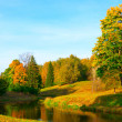 Beautiful autumn park — Foto Stock