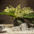 Still life with lily of the valley — Stock Photo #5584024