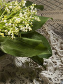 Still life with lily of the valley — Stock Photo