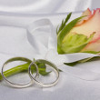 Stock Photo: Rose and weddings rings