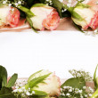 Card and roses on a pink background — Stock Photo #6385588