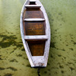 Stock Photo: Boat in cane