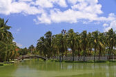 Islet with palms and foot-bridge in park — Stock Photo