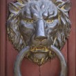 Brass doorknocker in the shape of ferocious lion — Stock Photo
