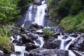 Milky waterfall near Ritsa lake — Stock Photo