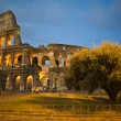 Colosseum in Rome , Italy at twilight — Stok fotoğraf