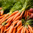 Bunches of fresh carrots — Stock Photo #5791324